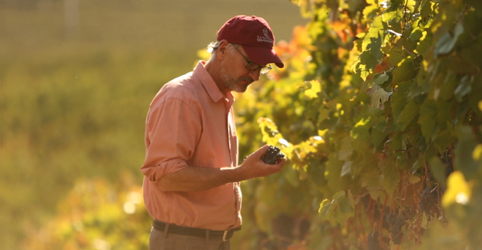 Winemaker Brian Carter, Taittinger, Champion Cellars